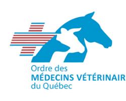 ovvq ordre medecins veterinaires quebec